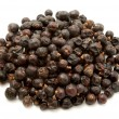 Dried juniper berries - Stock Photo