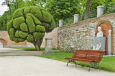 Empty bench in Retiro park, Madrid (Spain) — Stock Photo