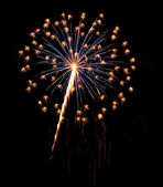 A burst of Fireworks in the night sky. — Stock Photo