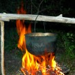 Metal pot under a fire - Stock Photo