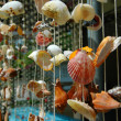 Stock Photo: Hanging of seashells