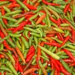 Chilli pepper — Stock Photo