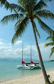 Catamaran near the beach — Stock Photo