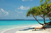 White sand beach at Maldives — Stock Photo