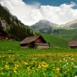 Alpine Huts - Switzerland — Stock Photo #10943541