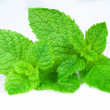 Stock Photo: Mint close up on white background