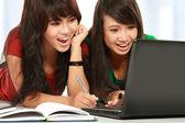 Girl using laptop — Stock Photo