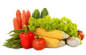 Healthy vegetables — Stock Photo