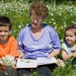 Grandmother with her grandchildren — Stock Photo #10739791