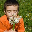 Boy smelling flowers — Stock Photo #10739828