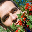 Man eating redcurrant — Stock Photo