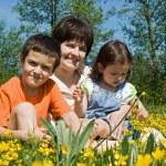 Happy family among yellow flowers — Stock Photo