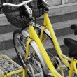 Yellow bicycles — Stock Photo