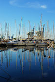 Baía de Palermo — Fotografia Stock