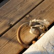 Stock Photo: Anchoring ring