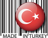 Türkiye barkod yaptı. vektör çizim — Stok Vektör