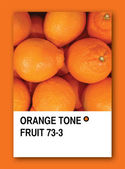 ORANGE TONE FRUIT. Color sample design — Stock Photo