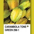 CARAMBOLA TONE GREEN. Color sample design — Stock Photo