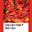CHILLIES TONE RED. Color sample design — Stock Photo