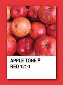 APPLE TONE RED. Color sample design — Stock Photo