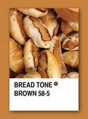 BREAD TONE BROWN. Color sample design — Stock Photo