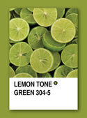 LEMON TONE GREEN. Color sample design — Stock Photo