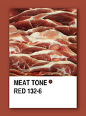 MEAT TONE RED. Color sample design — Stock Photo