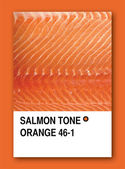 SALMON TONE ORANGE. Color sample design — Stock Photo