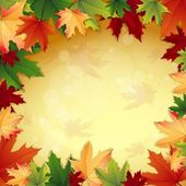 Autumn background with maple leaves — Stock Vector