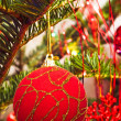 Royalty-Free Stock Photo: Christmas red ball on tree branch