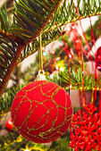 Christmas red ball on tree branch — Stock Photo