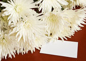 Flowers with blank note — Stock Photo