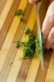 Cutting parsley — Stock Photo