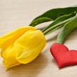 Tulip and heart — Stock Photo