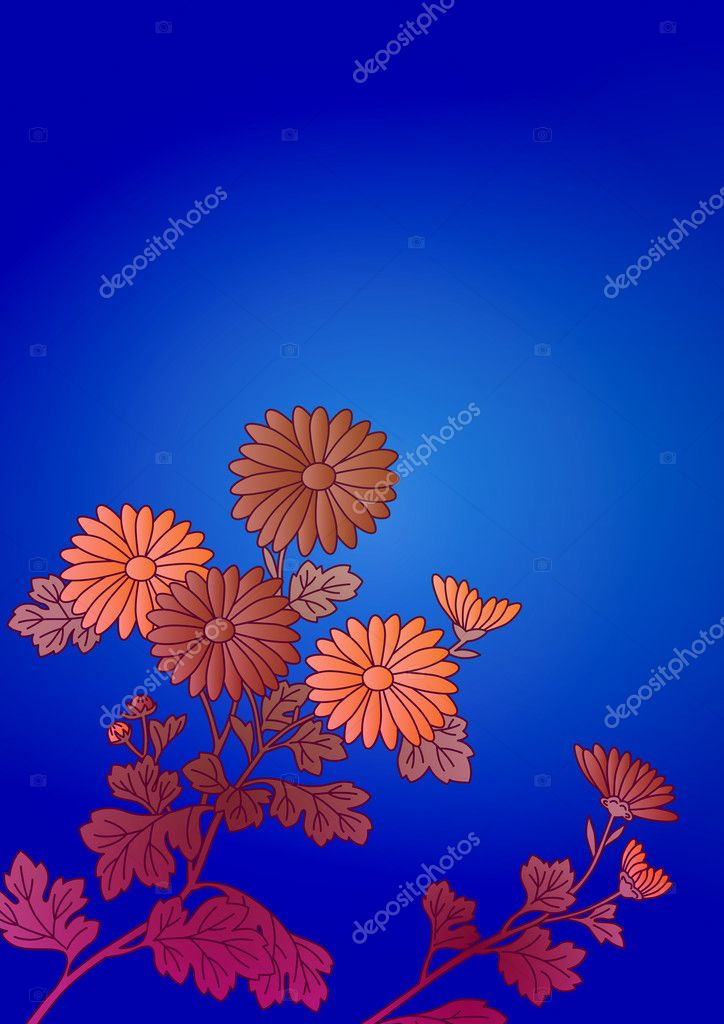 The pattern of a visionary flower — Stock Photo #11275018