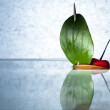 Stock Photo: Cherry with Nutshell Boat