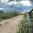 Country Road with Fence — Stock Photo