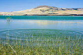 Serra del Corvo Lake — Stock Photo