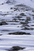 雪の山の岩 — ストック写真