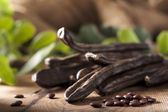 Carob Pods — Stock Photo