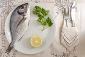 Gilthead on a Dish — Stock Photo