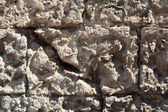 Tuff Wall Texture — Stock Photo