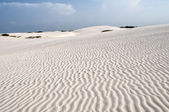 Sand dunes of the Lencois Maranheses in Brazil — Stock Photo