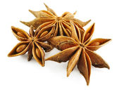 Anise stars (badian) — Stock Photo