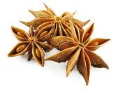 Anise stars (badian) — Stock Photo