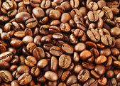 揚げコーヒー豆 — ストック写真