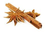 Cinnamon stick and anise stars — Stock Photo