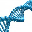 DNA strand — Stock Photo #10790274