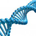 DNA strand — Stock Photo