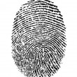 Finger Print - Stock Photo